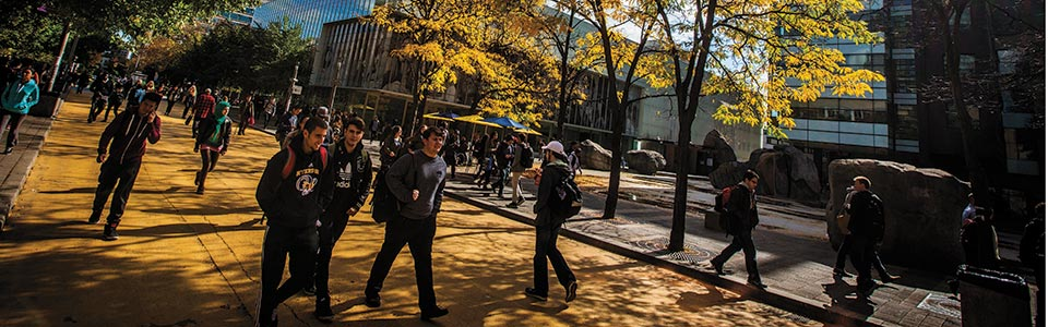 Ryerson University campus: students on a terrace with autumn leaves.