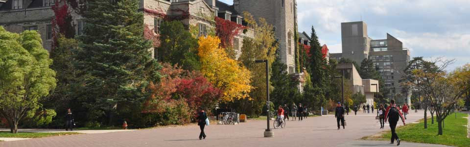 University of Guelph campus: pedestrian street by fall-coloured trees.